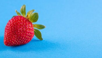 a single strawberry with a blue background