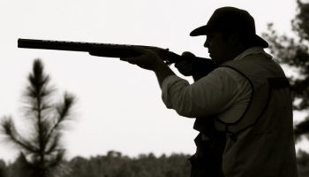 "Majority ""Now In Favour Of Compromise On Hunting"""