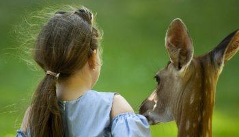 a girl standing next to a deer