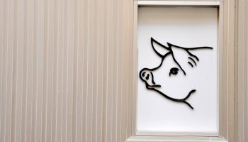 a pig drawn on a white wall