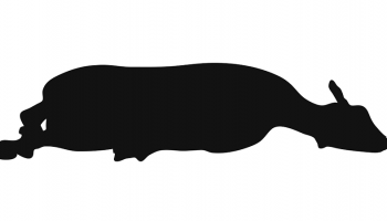 cartoon silhouette of a slaughtered lamb