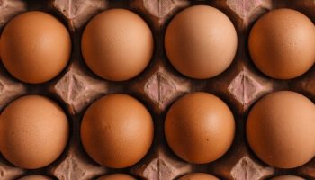 IEC Looks At Egg Industry Developments In North America