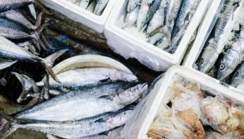 Towards Sustainable Aquaculture In Europe