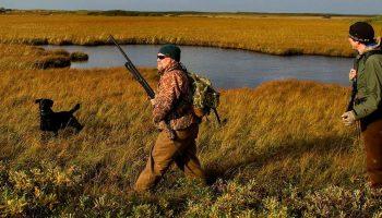 two hunters with a gun next to a black labrador