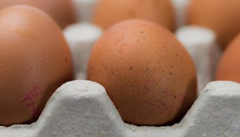 close up of eggs in a carton