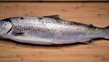 fish lying on a wooden chopping board