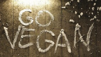 """Go Vegan"" written on the wall"