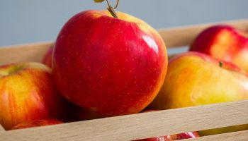 bright red apples in a box