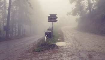 misty crossroads with signposts in nature