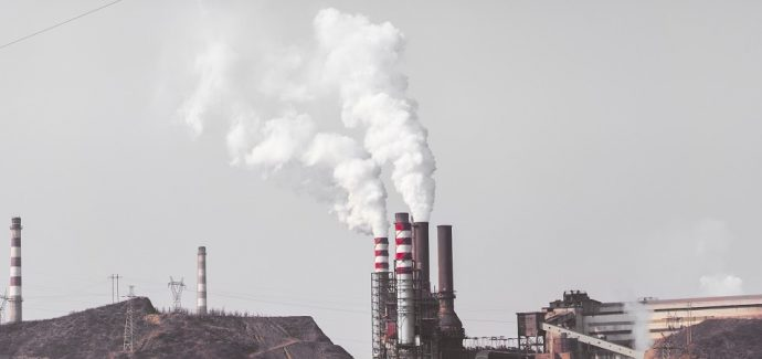Effects Of Air Pollution On Animals - Faunalytics Air Pollution Effects On Animals Pics
