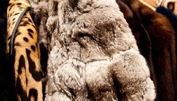 fur coats hung up on a clothes rack