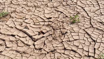 land affected by drought