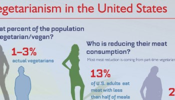 Infographic: Vegetarianism In The United States