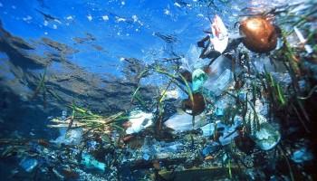 underwater view of trash floating in the ocean