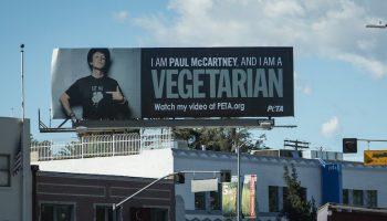 Paul McCartney vegetarian billboard ad in city centre