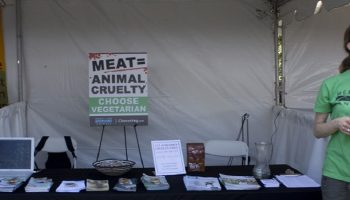 The Importance Of Comprehensive Abolitionist Vegan Outreach