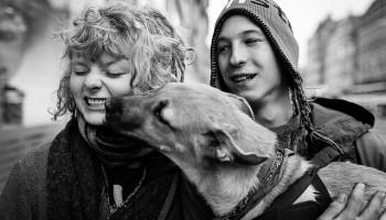 Companion Animals, People, And OCD