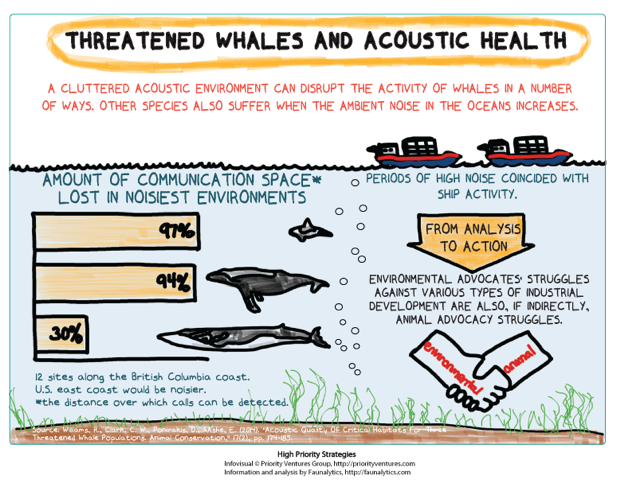 Threatened-Whales-and-Acoustic-Health-FULL