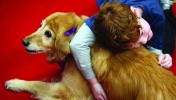 The Deep Bond Between Companion Animals And Children