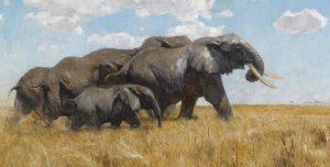 Elefanten by Friedrich Wilhelm Kuhnert
