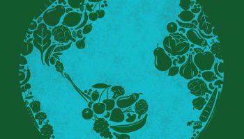 A Time For Pragmatic Vegan Advocacy
