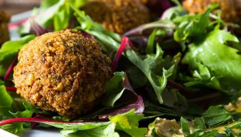 First-Ever Study Of Veganism And Animal Welfare In Palestine