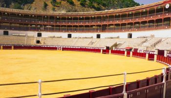 Bullfighting And Social Change: A Case Study From Spain