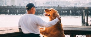dog and person on the pier
