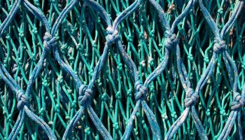 fishing nets up close