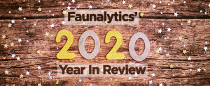 fauna 2020 year in review