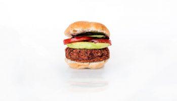 veggie burger white background
